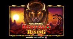 Buffalo Rising Megaways