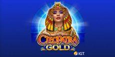 Cleopatra Gold