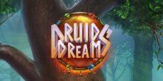 Druid's Dreams