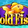 Gold Fish WMS