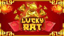Lucky Rat