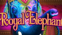 Royal Elephant