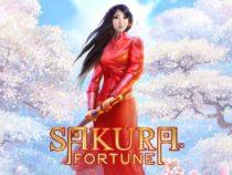 Sakura Fortune